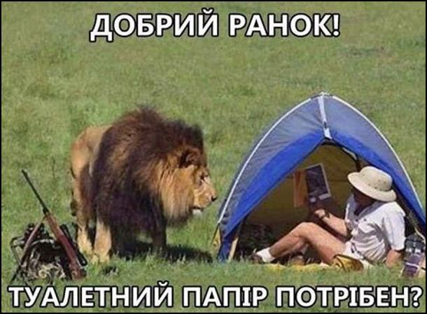 Турист в наметі. До нього підійшов лев: - Добрий ранок! Туалетний папір не потрібен?