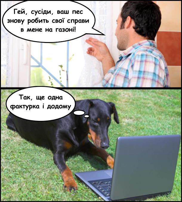 - Гей, сусіди, ваш пес знову робить свої справи в мене на газоні! В цей час пес сидить на траві перед ноутбуком: - Так, ще одна фактурка і додому