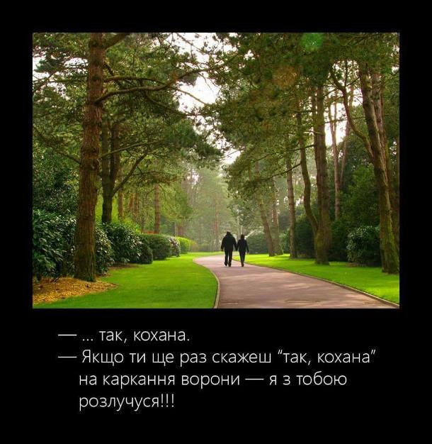 """Парком йде подружня пара. Чоловік: - ... так, кохана. Дружина: - Якщо ти ще раз скажеш """"так, кохана"""" на каркання ворони - я з тобою розлучуся!!!"""