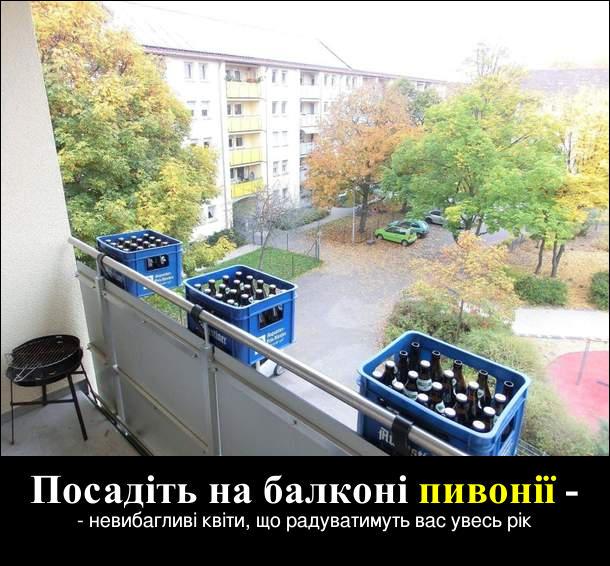 Прикол Пиво на балконі. Посадіть на балконі пивонії - невибагливі квіти, що радуватимуть вас увесь рік. Пиво на балконі