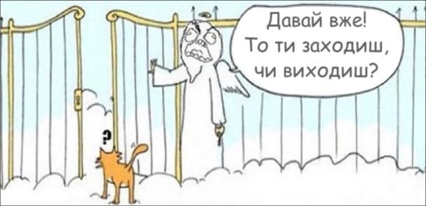 Кіт стоїть перед ворітьми Раю. Апостол Петро, роздратовано: - Давай вже! То ти заходиш, чи виходиш?
