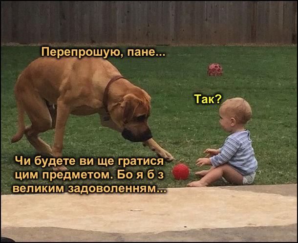 Прикол Малюк і пес. Малюк грається м'ячиком. До нього підгодить пес і тягне лапу до м'яча. - Перепрошую, пане… - Так? - Чи будете ви ще гратися цим предметом. Бо я б з великим задоволенням…