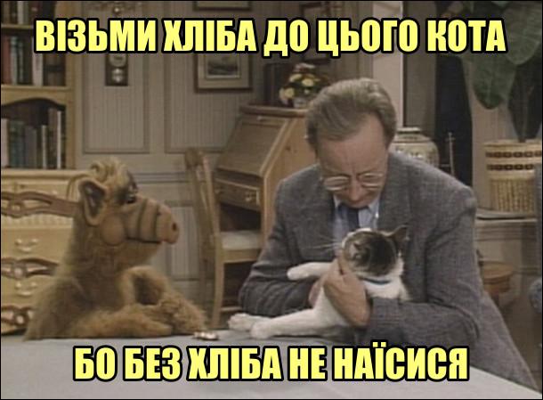 Цитата з серіалу про Альфа. Віллі тримає на руках кота, а Альф йому каже: - Візьми хліба до цього кота, бо без хліба не наїсися
