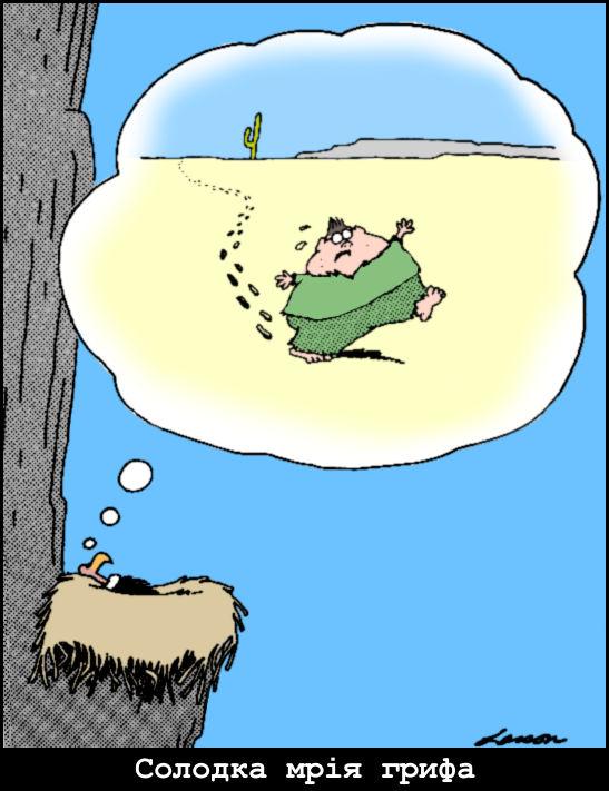 Солодка мрія грифа. Гриф лежить в гнізді і мріє про те, знесилений гладкий хлопчик йде пустелею