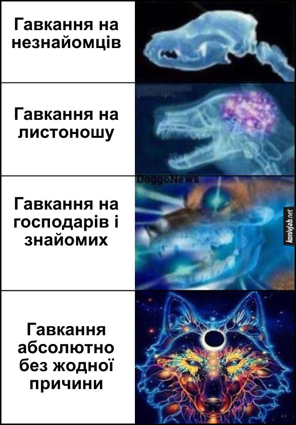 Мем expanding brain про собачий гавкіт. Гавкання на незнайомців. Гавкання на листоношу. Гавкання на господарів і знайомих. Гавкання абсолютно без жодної причини