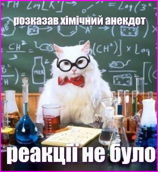 Розказав хімічний анекдот - реакції не було. Кіт науковець в окулярах поряд з колбами і мензурками