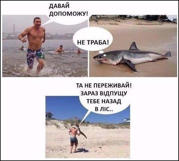 Прикол, мем про Кличка. Віталій Кличко побачив акулу, що лежить на березі. Він біжить і гукає: - Давай допоможу! Акула думає: - Не траба! Кличко взяв акулу на плечі і поніс: - Та не переживай! Зараз відпущу тебе назад в ліс...