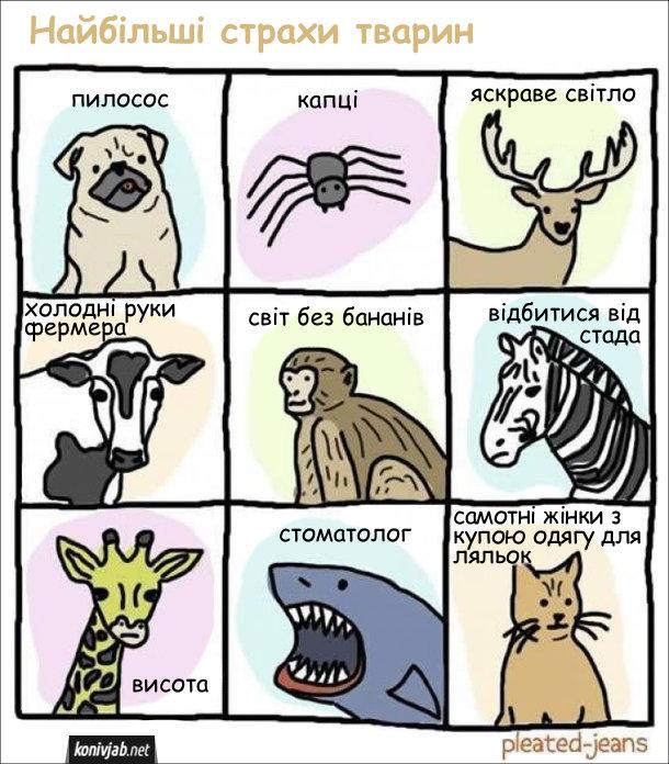 Смішна картинка про найбільші страхи тварин. Собака: пилосос. Павук: капці. Олень: яскраве світло. Корова: холодні руки фермера. Мавпа: світ без бананів. Зебра: відбитися від стада. Жирафа: висота. Акула: стоматолог. Кіт: самотні жінки з купою одягу для ляльок