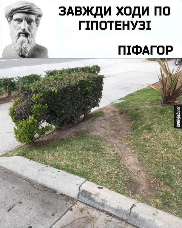 Жарт про Піфагора і його теорему. Піфагор: Завжди ходи по гіпотенузі. Ті люди, що не йдуть тротуаром, а йдуть навпростець по газону