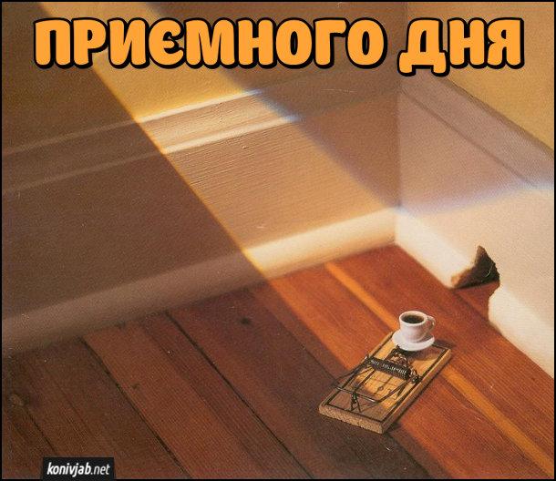 Листівка Приємного дня. В кімнаті біля мишачої дірки стоїть мишоловка, де замість приманки - горнятко кави