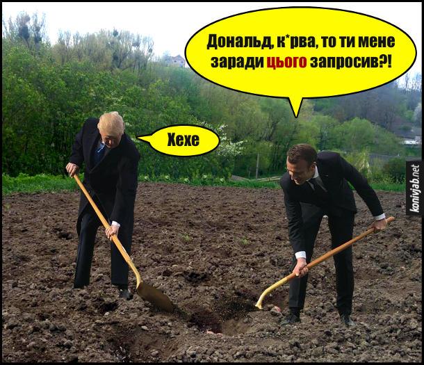 Мем Трамп і Макрон з лопатами. Дональд Трамп та Емануель Макрон саджають картоплю. Макрон: - Дональд, курва, то ти мене заради цього запросив?! Трамп підсміюється: - Хехе. Trump Macron meme