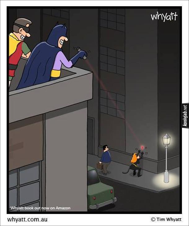 Смішний малюнок Бетмен і Жінка-Кішка. Бетмен і Робін сидять на даху і бавляться: Бетмен світить лазерним вказівником на будинок, а Жінка-Кішка чибає, щоб зловити цю червону цяточку