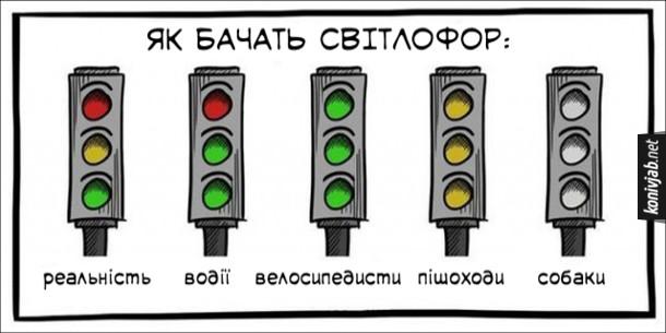 Жарт про світлофор. Як бачать світлофор. Реальність - зелений, жовтий, червоний. Водії - два зелених кольори і червоний. Велосипедисти - три зелені кольори. Пішоходи - три жовті кольори. Собаки - три сірих кольори (собаки не розрізняють кольорів)