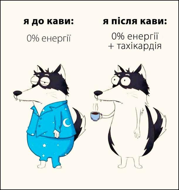 Прикол: До і після кави. Я до кави: 0% енергії. Я після кави: 0% енергії + тахікардія