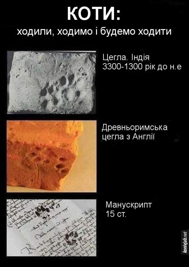 Жарт про котячі сліди. Коти: ходили, ходимо і будемо ходити і залишати свої сліди. Цегла. Індія 3300-1300 рік до н.е - на цеглі відбиток лапи кота. Древньоримська цегла з Англії - також слід кота. Манускрипт 15 ст. - чорнильні котячі сліди