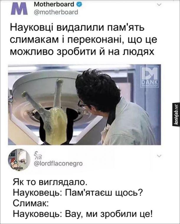 Прикол про наукове відкриття. Новина: Науковці видалили пам'ять слимакам і переконані, що це можливо зробити й на людях. Комент: Як то виглядало. Науковець: Пам'ятаєш щось? Слимак: (нічого). Науковець: Вау, ми зробили це!