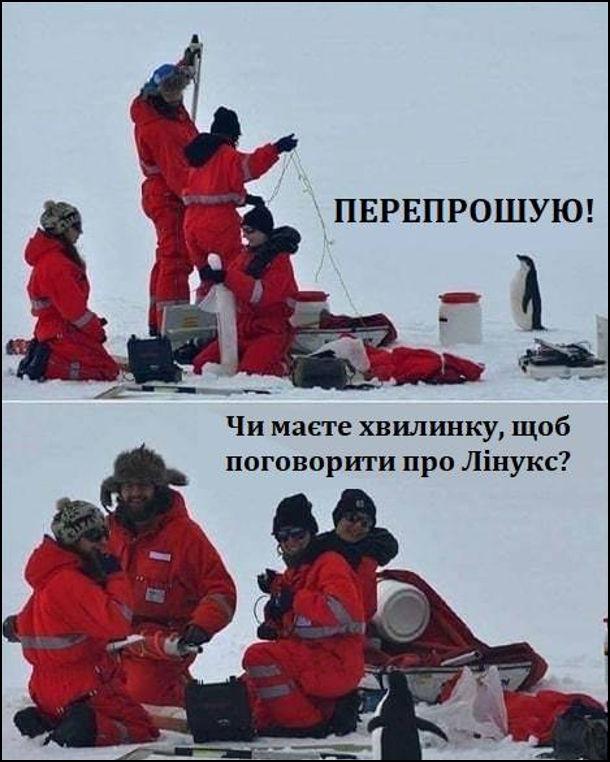 Прикол, жарт про Лінукс. В антаррктиді до людей підійшов пінгвін і каже: - Перепрошую! Чи маєте хвилинку, щоб поговорити про Лінукс?