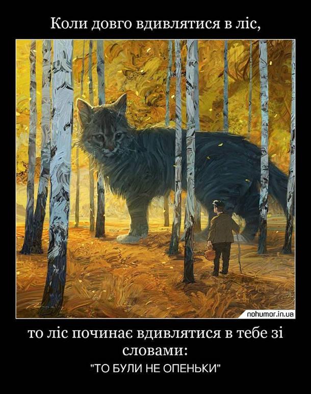 """Демотиватор про галюциногенні гриби. Коли довго вдивлятися в ліс, то ліс починає вдивлятися в тебе зі словами: """"То були не опеньки"""""""
