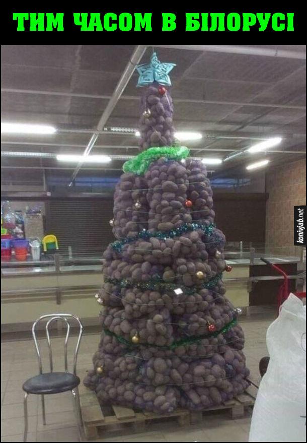 Жарт про Білорусь. Тим часом в Білорусі в супермаркеті різдв'яна ялинка зроблена з мішків з картоплею
