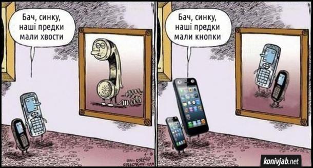 Смішний малюнок про телефони. Кнопкові телефони дивляться на картину, де зображений провідний телефон: - Бач, синку, наші предки мали хвости. Смартфони дивляться на картину, де зображені кнопкові телефони: - Бач, синку, наші предки мали кнопки