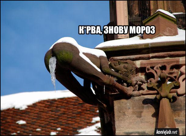 Смішна гаргулья (гаргуйль) на Фрайбурзькому кафедральному соборі, у вигляді оголеної жінки в акробатичній позі. З дупи в неї має стікати дощова вода, але вода замерзла і стала бурулькою. Ґаргулья: - Курва, знову мороз