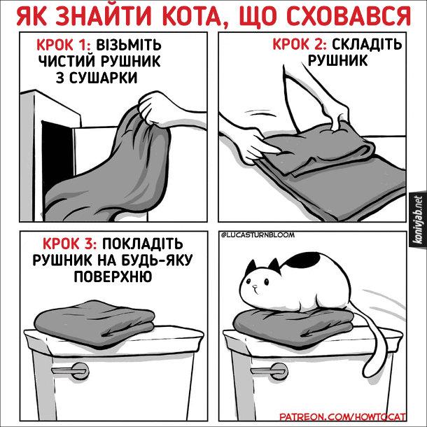 Жарт про котячі звички. Як знайти кота, що сховався. Крок 1: Візьміть чистий рушник з сушарки. Крок 2: Складіть рушник. Крок 3: Покладіть рушник на будь-яку поверхню. Незабаром з'явиться кіт і ляже на рушник