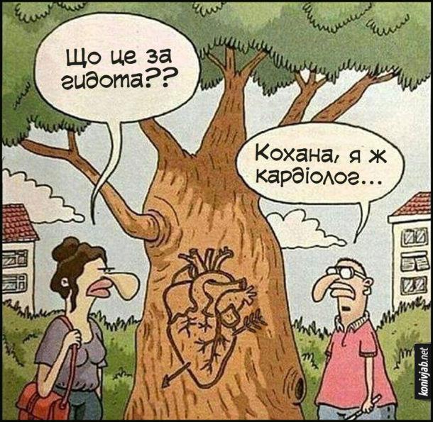 Жарт про кардіолога. Чоловік вирізав на дереві серце пробите стрілою кохання, але намалював його занадто детально і анатомічно точно. Дівчина: - Що це за гидота? Хлопець: - Кохана, я ж кардіолог...