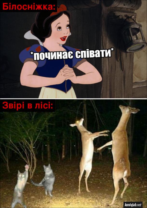 Мем Білосніжка: *починає співати*. Звірі в лісі: починають танцювати