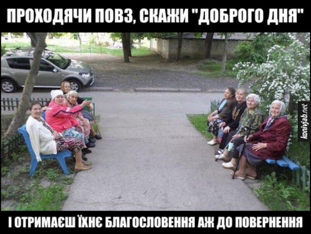 """Мем бабусі на лавці. Проходячи повз, скажи """"Доброго дня"""" і отримаєш їхнє благословення аж до повернення"""