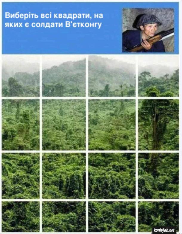 """Прикол про В'єтконг. Перевірка в інтернеті чи ви не робот """"Виберіть всі квадрати, на яких є солдати В'єтконгу"""" і зображені джунглі"""