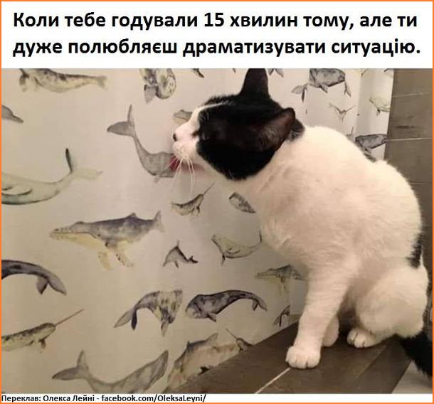 Мем кіт драматизує. Коли тебе годували 15 хвилин тому, але ти дуже полюбляєш драматизувати ситуацію. Кіт облизує штори, де зображені риби