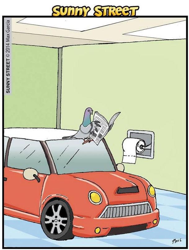 Смішний малюнок про голуба в туалеті. Голуб сидить на автомобілі з газетою і сере на нього.