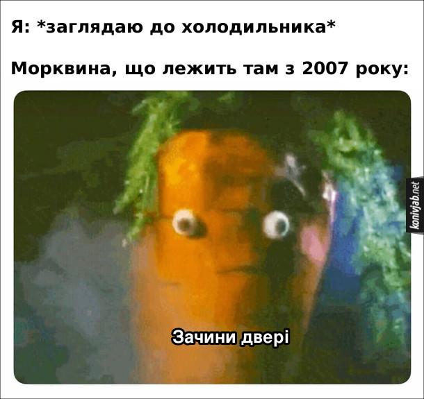 Мем про холодильник. Я: *заглядаю до холодильника*. Морквина, що лежить там з 2007 року: зачини двері