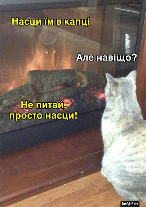 Прикол Кіт біля каміну дивиться у своє відображення в скляній камінній перегородці. Відображення: - Насци їм у капці. Кіт: - Але навіщо? Відображення: - Не питай, просто насци!