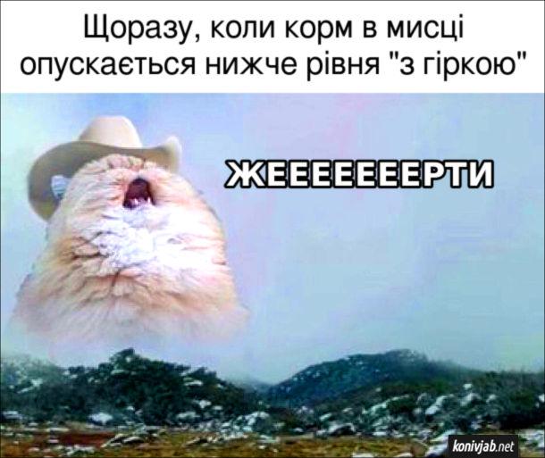 """Мем Кіт і корм. Щоразу, коли корм в мисці опускається нижче рівня """"з гіркою"""". Кіт: - Жееееееерти"""