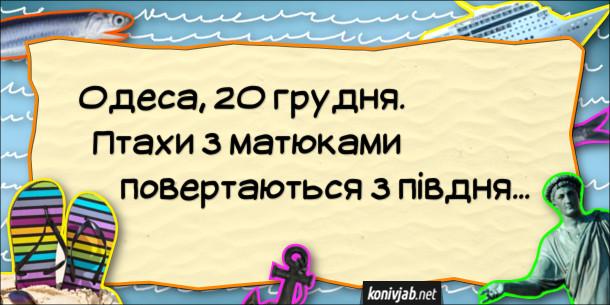 Анекдот про теплу зиму. Одеса, 20 грудня. Птахи з матюками повертаються з півдня...