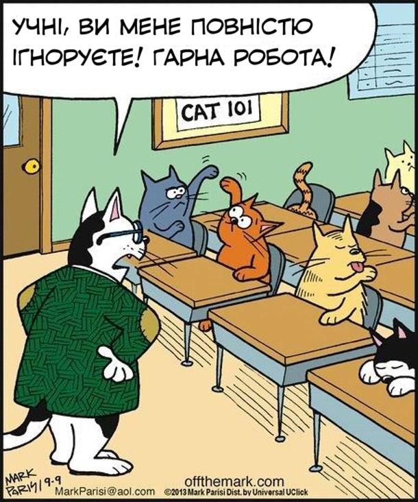 Смішний малюнок Котяча школа. Кіт-вчитель: - Учні, ви мене повністю ігноруєте! Гарна робота!