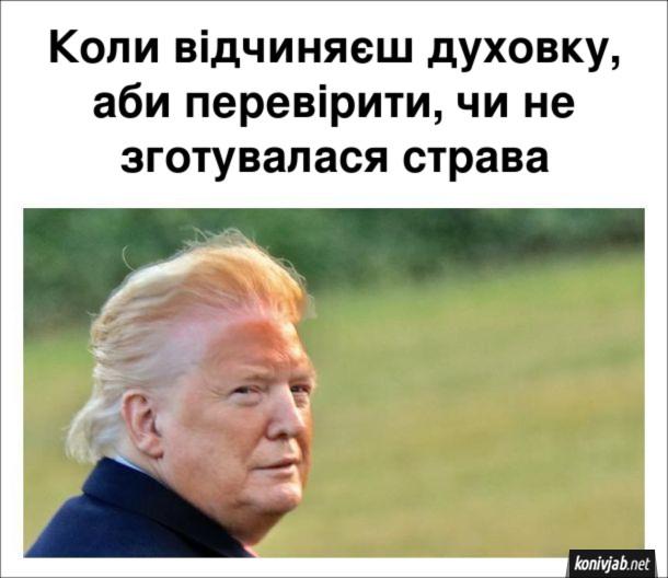 Смішне фото Засмага Трампа. Коли відчиняєш духовку, аби перевірити, чи не зготувалася страва