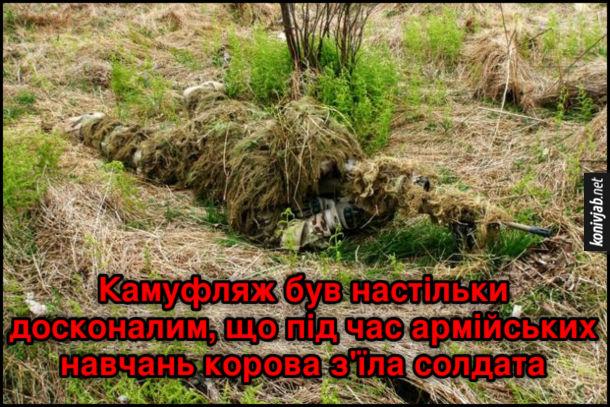 Анекдот про камуфляж. Камуфляж був настільки досконалим, що під час армійських навчань корова з'їла солдата