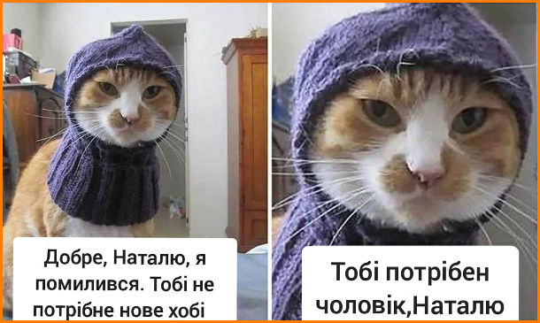 Прикол Шапка для кота. Кіт: - Добре, Наталю, я помилився. Тобі не потрібне нове хобі. Тобі потрібен чоловік, Наталю