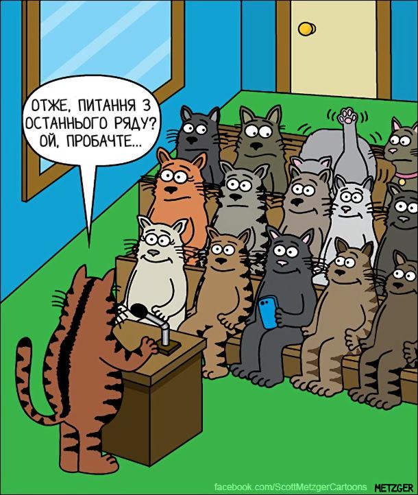 Смішний малюнок Кіт вилизується. Засідання котів. Доповідач: - Отже, питання з останнього ряду? Ой, пробачте... (там кіт підняв лапу, бо почав вилизувати себе)