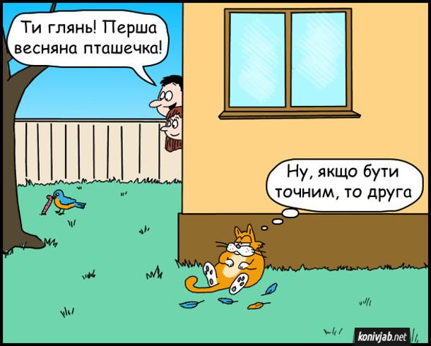 Смішний малюнок кіт і пташечка. Чоловік до дружини каже: - Ти глянь! Перша весняна пташечка! Кіт сидить і думає: - Ну, якщо бути точним, то друга. (біля нього розкидане пташине пір'я).