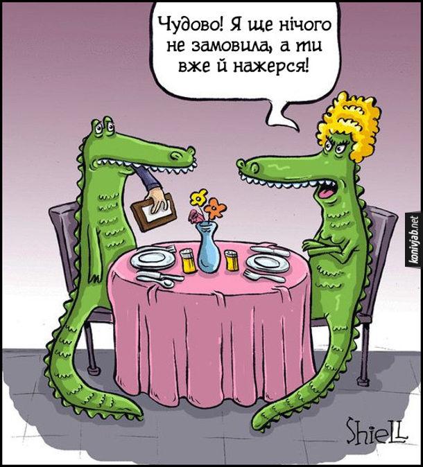 Смішний малюнок Крокодили (чоловік і дружина) в ресторані. Крокодилиха: - Чудово! Я ще нічого не замовила, а ти вже й нажерся!