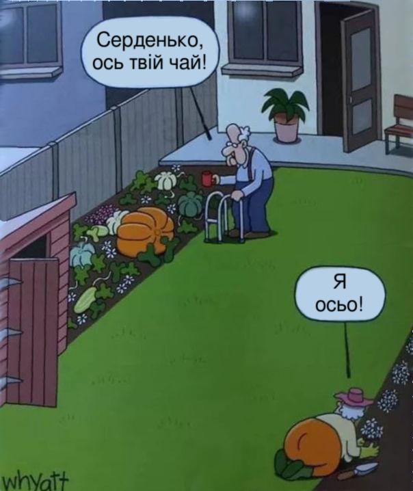 Смішний малюнок Баба і дід. Дід з чашкою підійшов до гарбуза: - Серденько, ось твій чай! Баба гукає хз іншого кутка двору: - Я осьо!