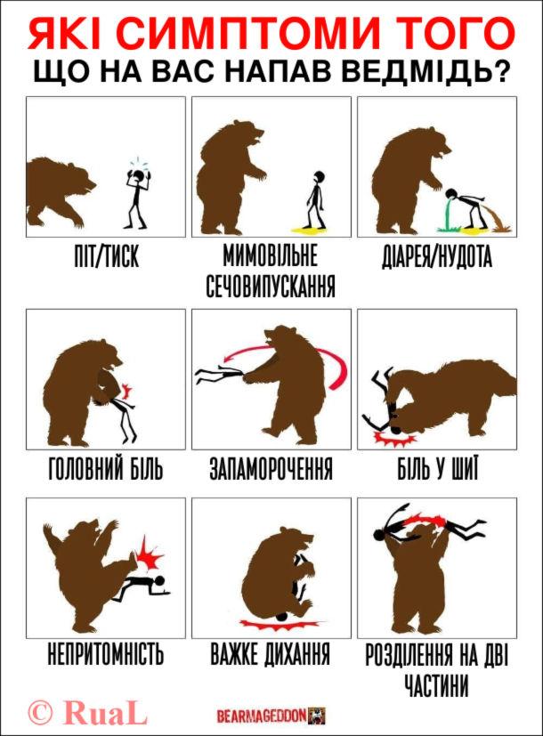 Чорний гумор Напад ведмедя. Які симптоми того, що на вас напав ведмідь? Піт/тиск, мимовільне сечовипускання, діарея/нудота, головний біль, запаморочення, біль у шиї, непритомність, важке дихання, розділення на дві частини