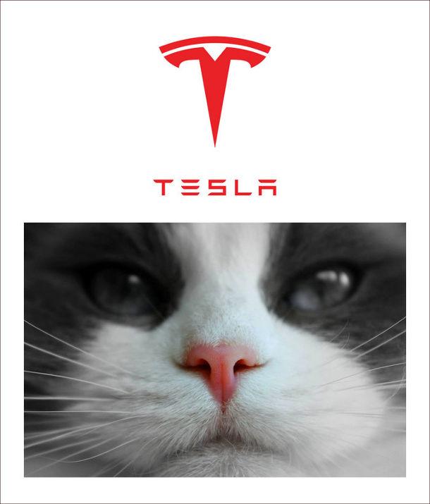 Прикол Що означає логотип Tesla