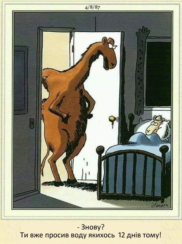Смішний малюнок про верблюдів. Верблюденя в ліжечку. Верблюд до нього: - Знову? Ти вже просив воду якихось 12 днів тому!