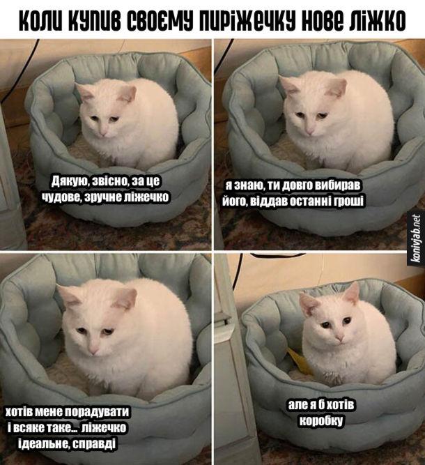 Прикол Ліжечко для кота. Коли купив своєму Пиріжечку нове ліжко. Кіт сумно: - Дякую, звісно, за це чудове, зручне ліжечко. Я знаю, ти довго вибирав його, віддав останні гроші. Хотів мене порадувати і всяке таке...  ліжечко ідеальне, справді. Але я б хотів коробку