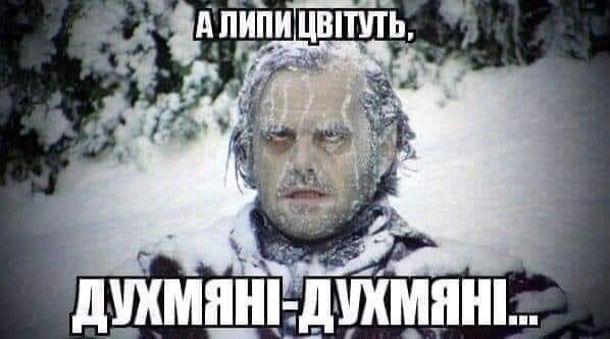 Мем холодне літо. А липи цвітуть духм'яні-духм'яні...