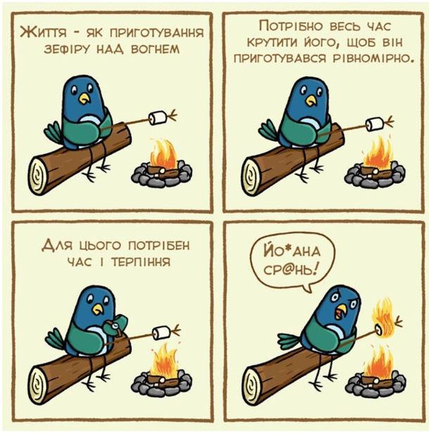 Смішний комікс Зефір. Життя - як приготування зефіру над вогнем. Потрібно весь час крутити його, щоб він приготувався рівномірно. Для цього потрібен час і терпіння... Йобана срань!